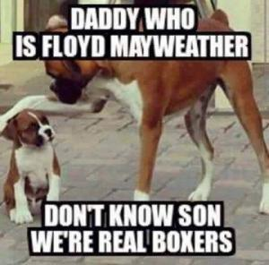 Daddy who is Floyd Mayweather