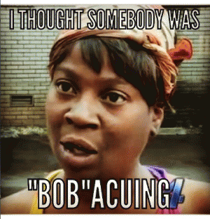 """I thought somebody was  """"Bob""""acuing"""