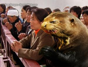Otter playing with Asians