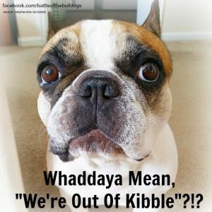 """Whaddaya mean, """"we're out of Kibble""""?!?"""