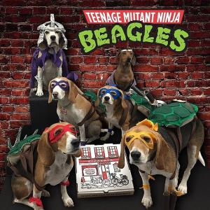 Teenage Mutant Ninja