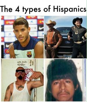 The 4 types of Hispanics