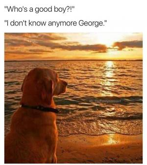 """Who's a good boy?!""