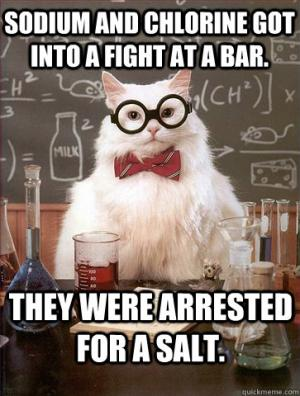 Sodium and Chlorine got into a fight at the bar.   They were arrested for a salt.