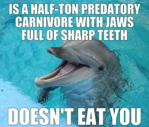 Is a half-ton predator carnivore with jaws full of sharp teeth