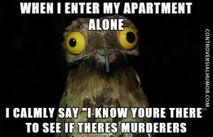"When I enter my apartment alone I calmly say "" I know youre there"" to see if theres murderers"