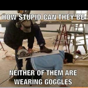 How stupid can they be